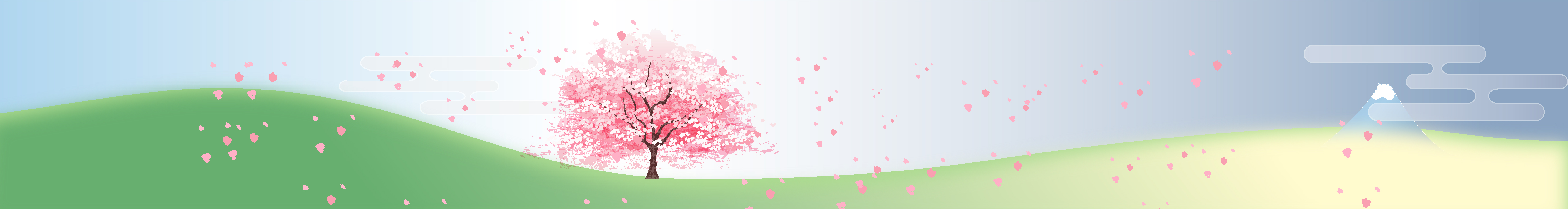 sakura: celebration and sadness…